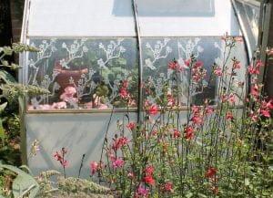 Greenhouse shading Peelable Glass Paint Thorndown