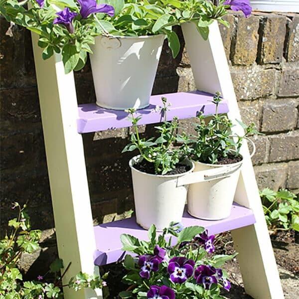 Thorndown-Bath-Cream-plant-ladder