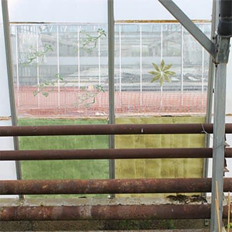 Greenhouse Interior pane roller marks