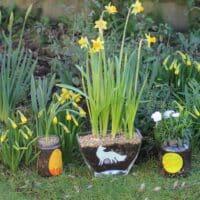 Thorndown-Peelable-Glass-Paint-plant-jars