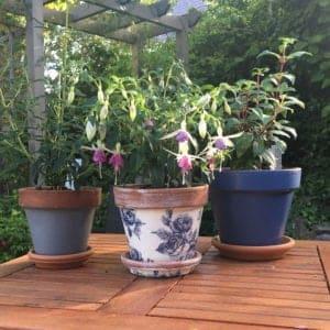Lead-Grey-&-Peregrine-Blue-terracotta-pots