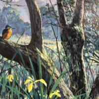 Kingfisher-in-Jonathan-Minshull-mural
