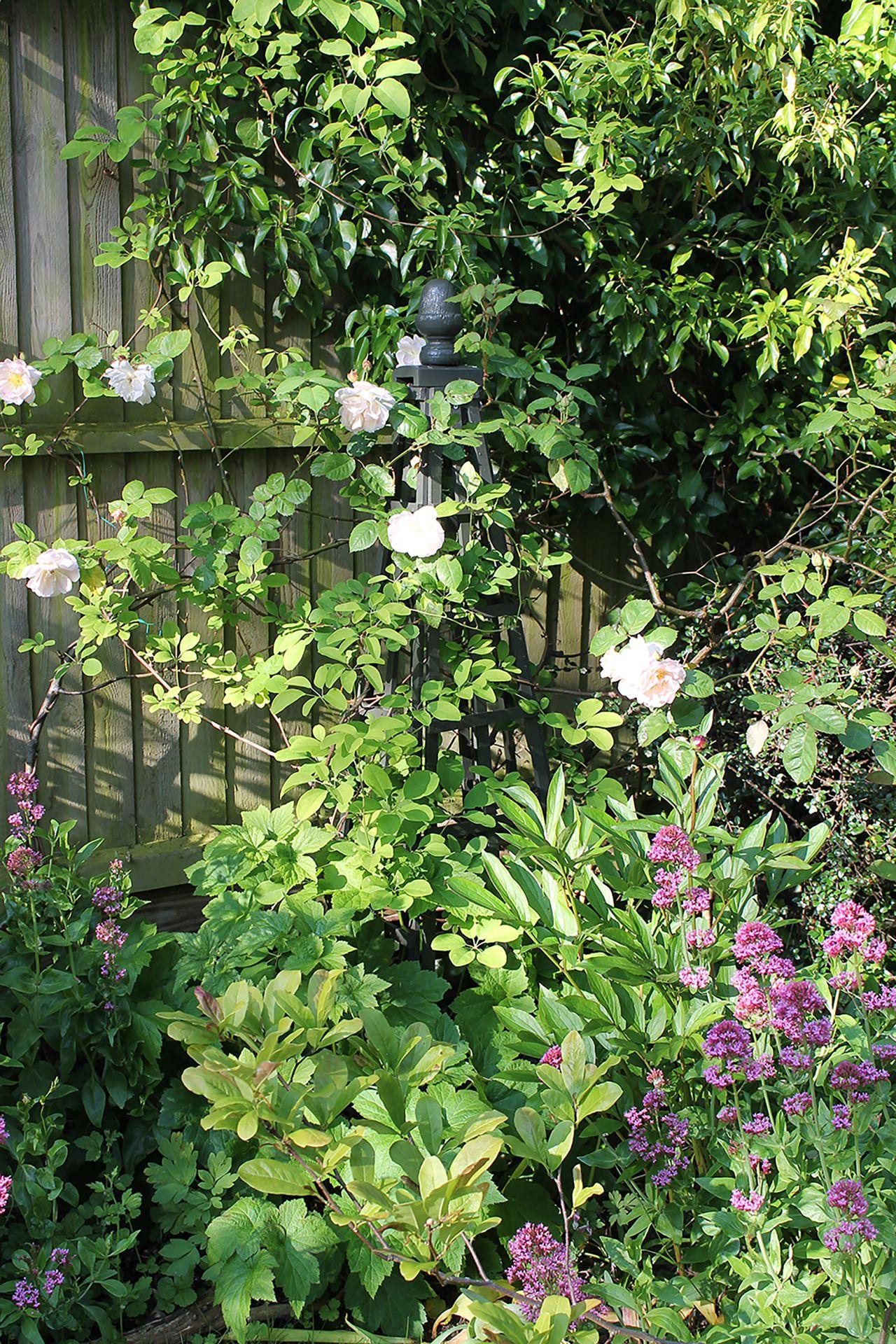 Thorndown-Yew-Green-Wood-Paint-on-garden-obelisk