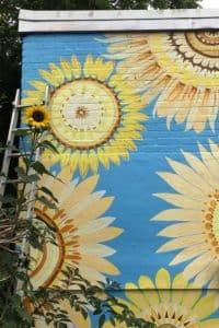 Sunflower-Mural-for-Glastonbury-Mural-Trail