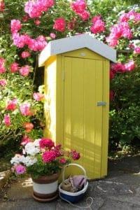 Thorndown-Golden-Somer-and-Swan-White-in-summer