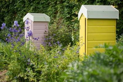Thorndown-Wood-Paint-Cheddar-Pink-Golden-Somer-Forest-Sheds