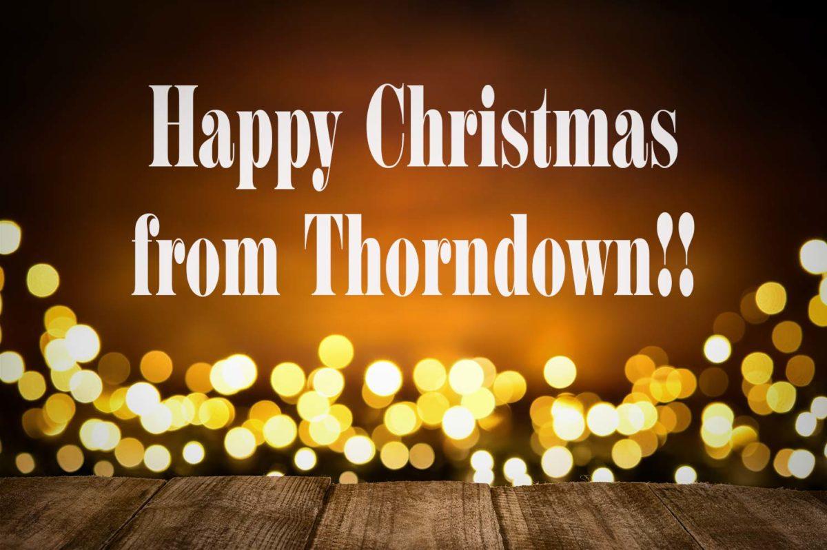 Thorndown-Paint-Christmas-Post