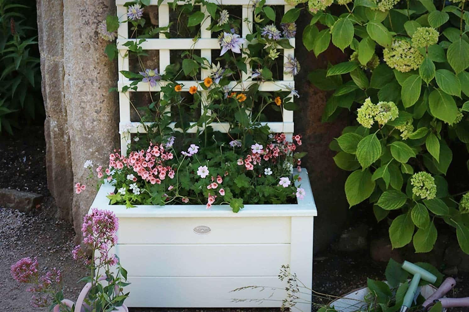 Thorndown-Paint-Small-Trellis-Planter-Blog-Post-Header