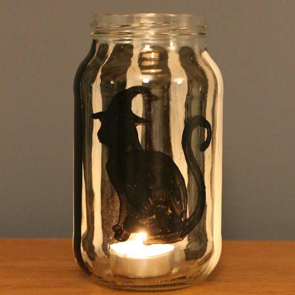Thorndown-Halloween-humbug-cat