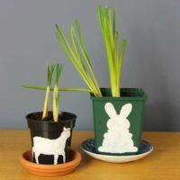 Thorndown-Peelable-Glass-Paint-Easter-bulbs-plant-pots