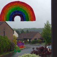 Rainbow-with-rainbow-rose