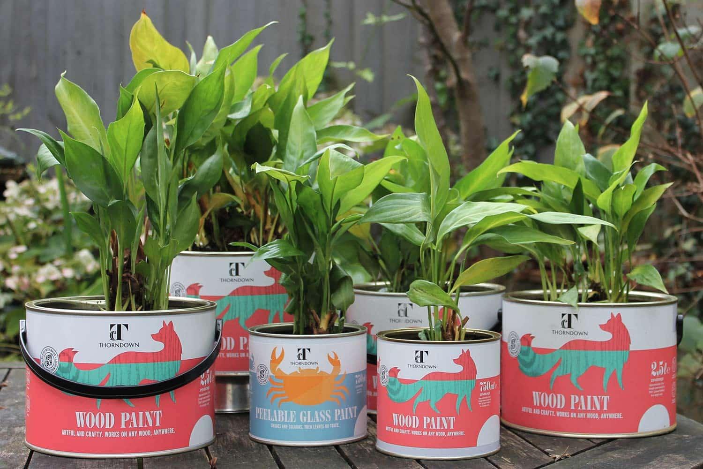 Thorndown-Paint-Tin-Plant-Pots