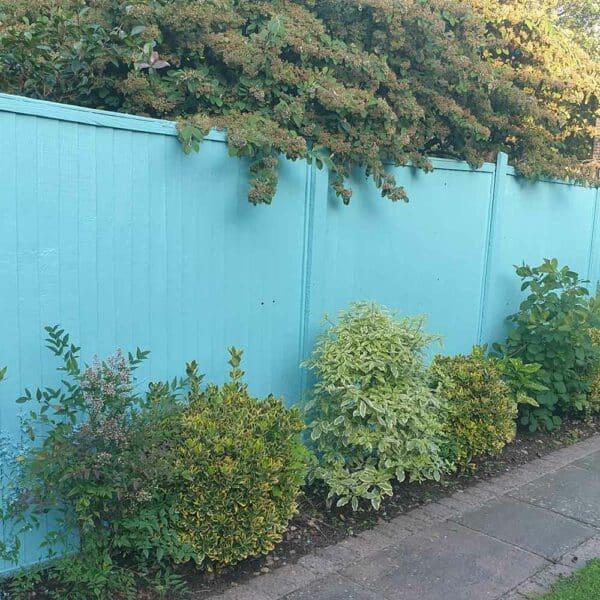 Thorndown-Goblin-Blue-Wood-Paint-on-fence